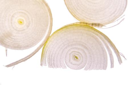 onion slice: white onion slice with backlighting Stock Photo