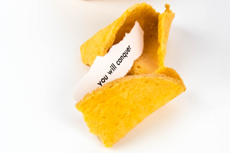 succeed: open fortune cookie with strip of white paper - YOU WILL SUCCEED