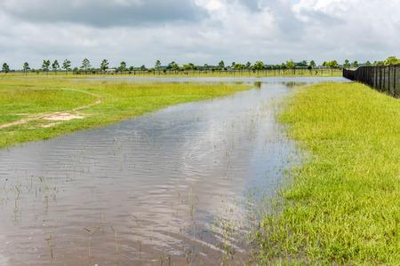 Stehendes Hochwasser bedeckt Felder und Spuren Standard-Bild - 40508360
