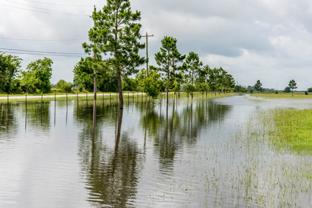 Standing flood waters covering fields and trails Stock fotó - 40486033
