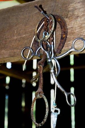 worn equestrian riding gear hanging in a barn Foto de archivo