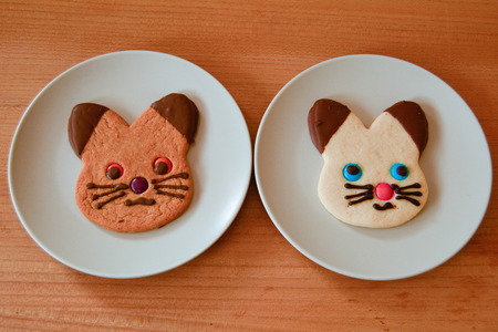 shortbread: Shortbread and Ginger bread cat biscuits on plate