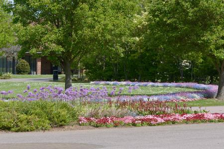 dasiy: Cemetery flower beds