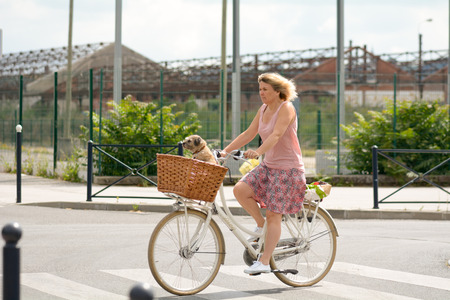 bordeau: Bordeaux France June 23 2015: Woman cycling through streets of Bordeaux with Border Terrier dog in basket on front of bike Editorial