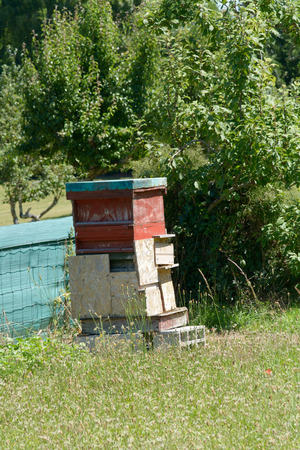 layers levels: Bee hive in garden Stock Photo