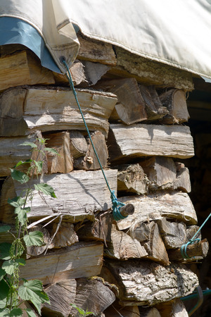 tarpaulin: Stack of firewood under tarpaulin Stock Photo