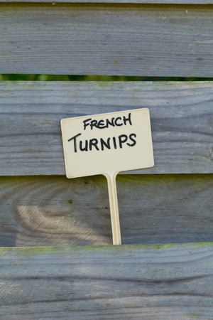 fence panel: French turnips label in fence panel