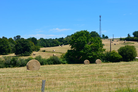 french countryside: Hay bales in field in French countryside