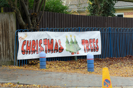 for sale sign: Christmas Trees for sale sign