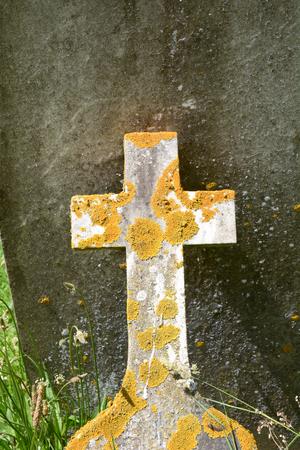 Broken Christian Cross grave stone covered in yellow lichen