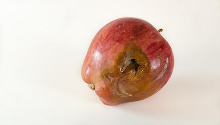 rotten: Red rotten apple
