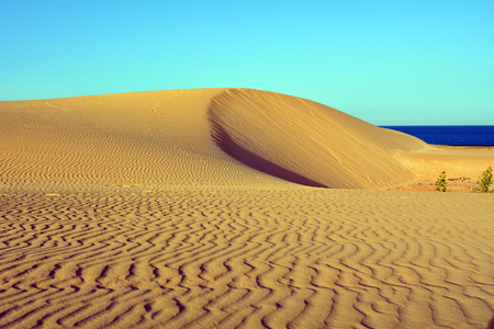 Landscape Dunes of Corralejo, Fuerteventura, Canary Islands, Spain.