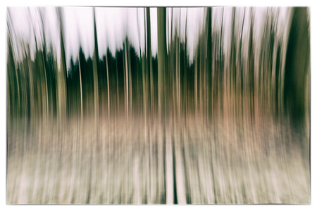 belgie: A conceptual photo using slow shutter speed of trees in a forest showing green and orange leaves with a strong vintage filter in Europe