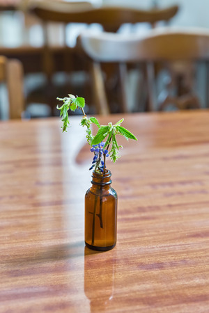 Singular little brown bottle with a blue blossom flower on a wooden table, projecting a reflection