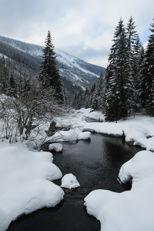 Mountain creek in winter