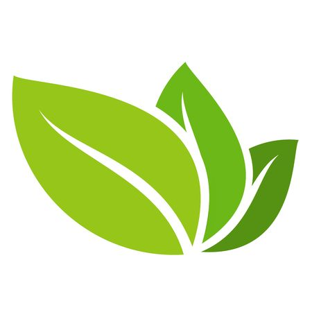 Eco icon green leaf vector illustration isolated on white isolated on white background.