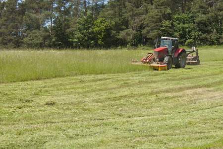 mows: Summer day red tractor mows the lawn for animal feed on the farm. Stock Photo