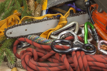arborist: Tools for trimming trees, utility arborists. Chainsaw, rope and carabiners to work lumberjack. Arborist - doctors trees Stock Photo