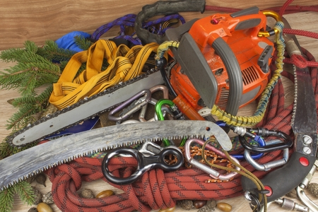 Tools for trimming trees, utility arborists. Chainsaw, rope and carabiners to work lumberjack. Arborist - doctors trees Standard-Bild
