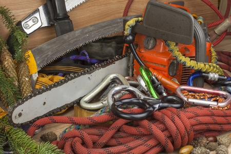 work tools: Tools for trimming trees, utility arborists. Chainsaw, rope and carabiners to work lumberjack. Arborist - doctors trees Stock Photo