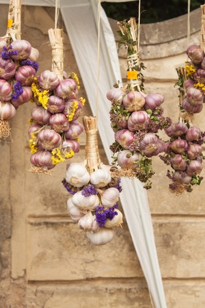 ahorcada: Organic garlic for sale at outdoor Farmers Market. Sales of garlic at the market.
