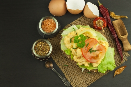 albumin: Fresh scrambled eggs on sunflower bread. Healthy food. Domestic food preparation. Eggs for a snack. Diet food. Toasted bread with scrambled eggs.