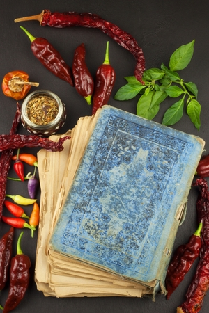 Cookbook and chillies recipe for spicy food mexican cuisine cookbook and chillies recipe for spicy food mexican cuisine food preparation according to forumfinder Choice Image