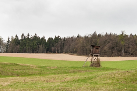 hunters tower: Hunting Tower on a field near the forest. Hunting deer. Overcast day Stock Photo