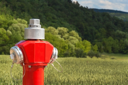 safe water: Red fire hydrant at the edge of a green field Stock Photo