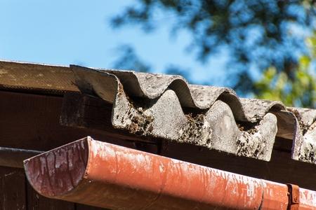 Eternal roof. Asbestos boards. Dangers of cancer. Hazardous waste Stock Photo