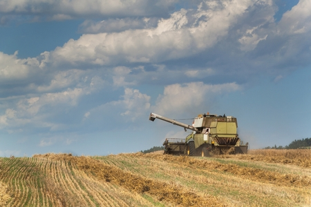 Combine harvester harvested ripe wheat on a farm in Czech Republic. Harvest time. Cultivation of grain on a farm Stock Photo