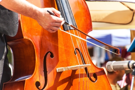 Detail of bass musical instrument. Artistic performances at folk festivals. Traditional musical instrument 免版税图像