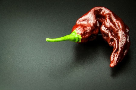 Chili pepper on black background. Space under the text. Extra hot chili pepper Nagy Bhut Jolokia Chocolate. Healthy spice. Sale Chili Imagens