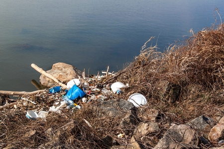 Residuos plásticos en la orilla del lago en República Checa. Contaminación ambiental. Reciclaje de residuos plásticos.
