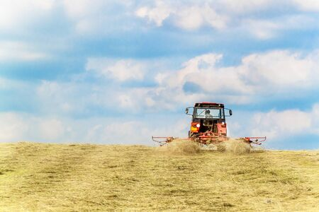 Hay turning to dry grass in the sun on the field in the Czech Republic - Europe. Agricultural landscape. Summer day on the farm. Reklamní fotografie
