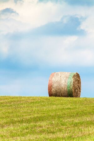 Dry straw bales on mown meadow. Summer meadow in the Czech Republic. Working on an agricultural farm.