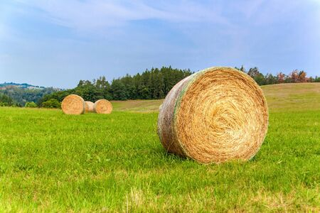 Hay bale in Czech Republic field with blue sky in fall. Agricultural meadow. Rural landscape in the Czech Republic. Food for cows. Фото со стока