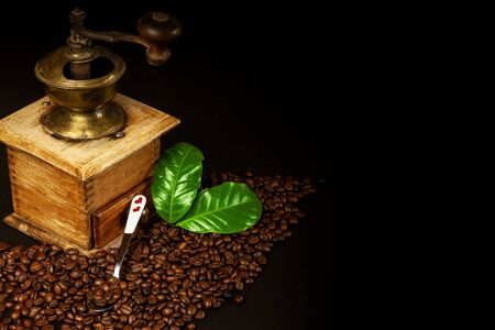 Coffee beans and a wooden grinder. Old coffee grinders. Healthy drink. Healthy drink. Grinding coffee. 写真素材