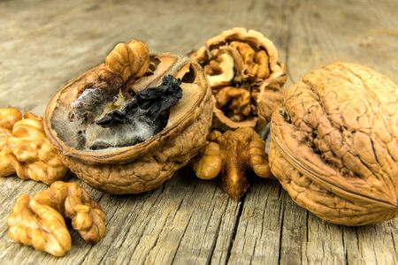 Moldy walnut on wooden table. Unhealthy food. Food mold. Poisonous mold. Storage of nuts. Reklamní fotografie
