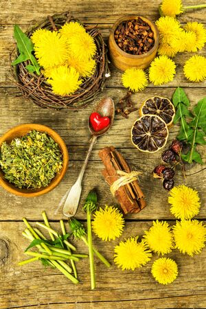 Herbal tea infusion of fresh dandelion leaf, with yellow blossoms. Medicinal plant dandelion (Taraxacum officinale). Traditional medicine. Medicinal herb. Banque d'images