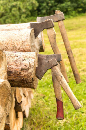 Old rusty axes stuck in a pine block. Lumberjack tools. Work in forest. Preparation of wood for heating.