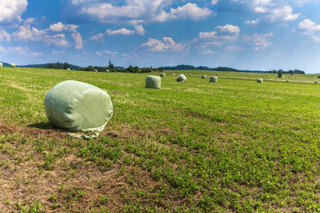 Agricultural landscape in Czech republic with straw packages on field. Cereal bale of hay wrapped in plastic green foil. Summer hay harvest. Cattle feed.