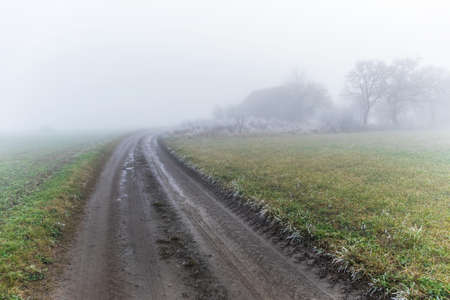 Fog over country road in the autumn. Autumn landscape. A dirt road in the fog in the Czech Republic. Mysterious landscape. Reklamní fotografie