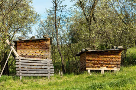 Raw wood under cover in the fresh air dries naturally. Wooden planks. Beams. Air-drying timber stack. Wood air drying. Building material. Wood warehouse. Standard-Bild