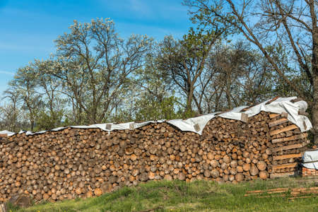 Finely stacked logs stored in the open air as firewood. Stack of Firewoods. Wood stacked and prepared for winter Pile of wood logs.