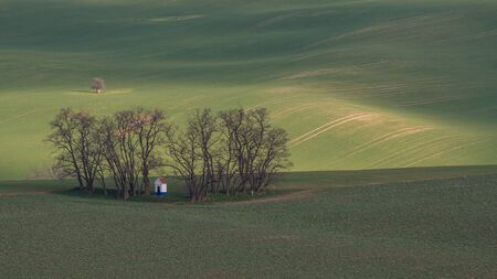 Spring in the country - a small rural chappel nested among a few barren trees, this all in a wavy lanscape with green fields and  meadows. This illuminated by low sun