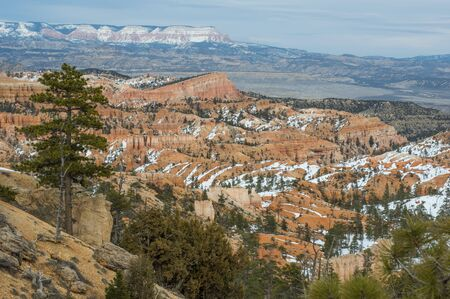 Bryce Canyon in spring - broad view of sunlit BC. Foreground frame by green pine trees, red  ochre canyon cliffs partly covered by white snow. Mountains on distant horizon