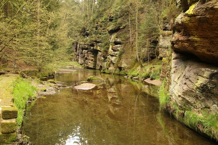 schweiz: View of a small river and sandstone in Bohemia Switzerland