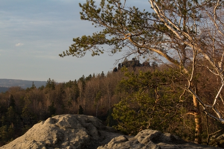 czech switzerland: View of the landscape at sunset in National Park Bohemian Switzerland, Czech Republic
