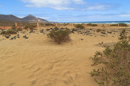 Cemetery on the Cofete beach, Fuerteventura- Canary Islands Stock Photo